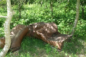 Newt Seat - carved by Peter Freeman Photo by Su Haselton