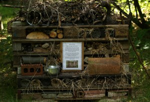 Bug Hotel - a new way to recycle unwanted odds and ends Photo by Su Haselton