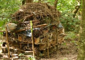 Alternative Bug Hotel Accommodation Photo by Su Haselton