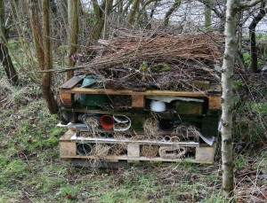 Bug Hotel Daffodil Walk Photo by Su Haselton