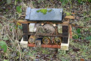 Bug Hotels can be small Photo by Su Haselton