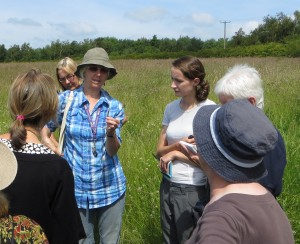 Wildflower Walk - Hilary explains about wild grasses Photo by Tim Izzett
