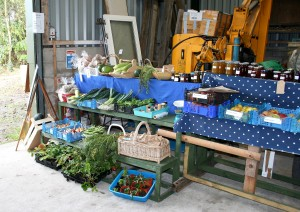 A selection of produce for sale Photo by Su Haselton
