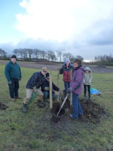 First tree planted Photo by Louise Reed