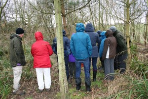 Sunday guided walk - visiting Gill's Pond Photo by Su Haselton