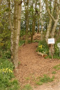 new path from car park to Cabin Wood Photo by Su Haselton