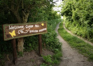 New Reserve Sign on Public Footpath Photo by Su Haselton