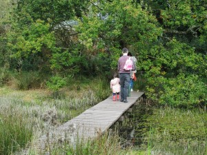 Enjoying the Seldom Pond Boardwalk Photo by Fred Izzett