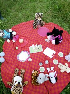 Teddies and Friends having a Picnic Photo by Janine Melvin
