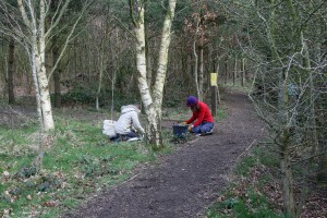 Transplanting snowdrops in Cabin Wood Photo by Su Haselton