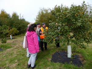 Orchard Tour Photo by Liz Brotherstone